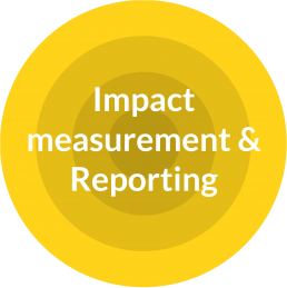 Impact, measurement and reporting
